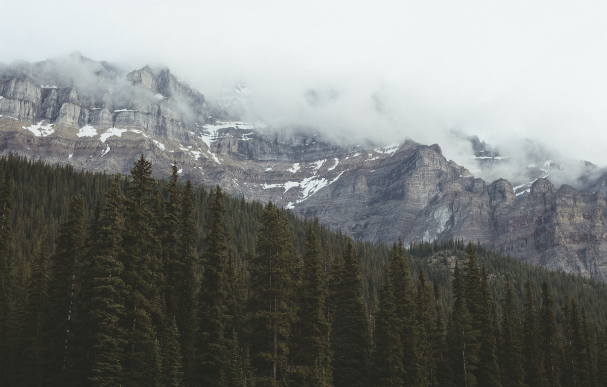 President's Corner: Alberta Bound